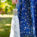 Blåbärsyoghurt-vanilj