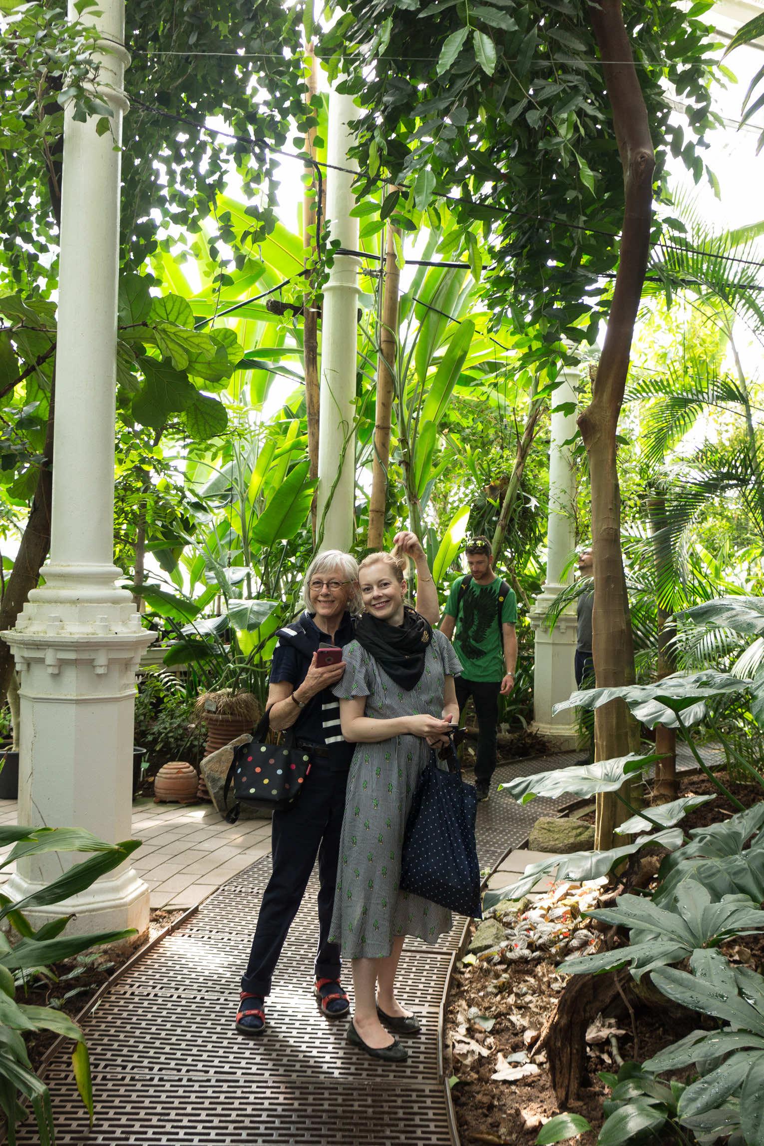 Botaniska trädgården Köpenhamn