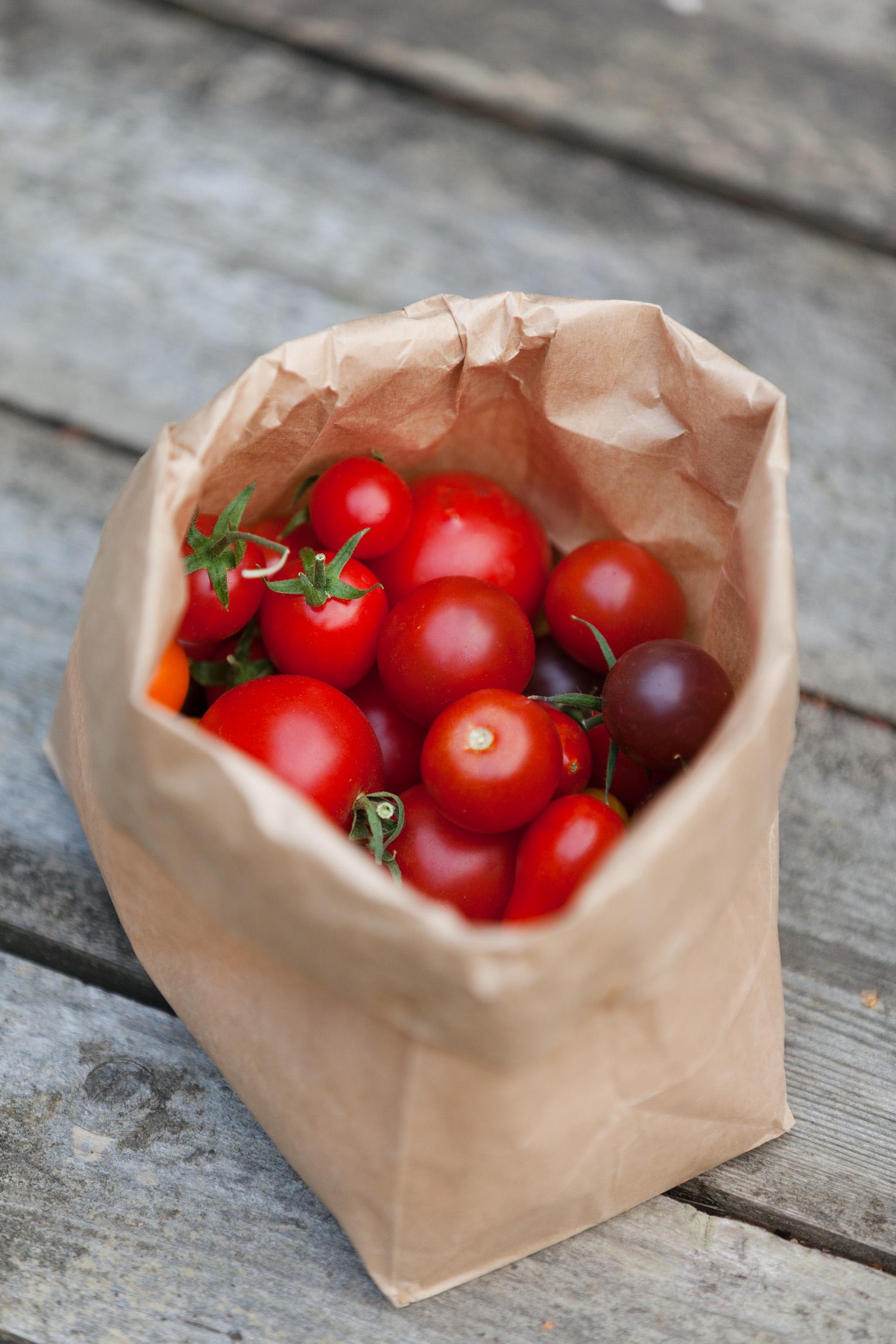 egenodlade tomater