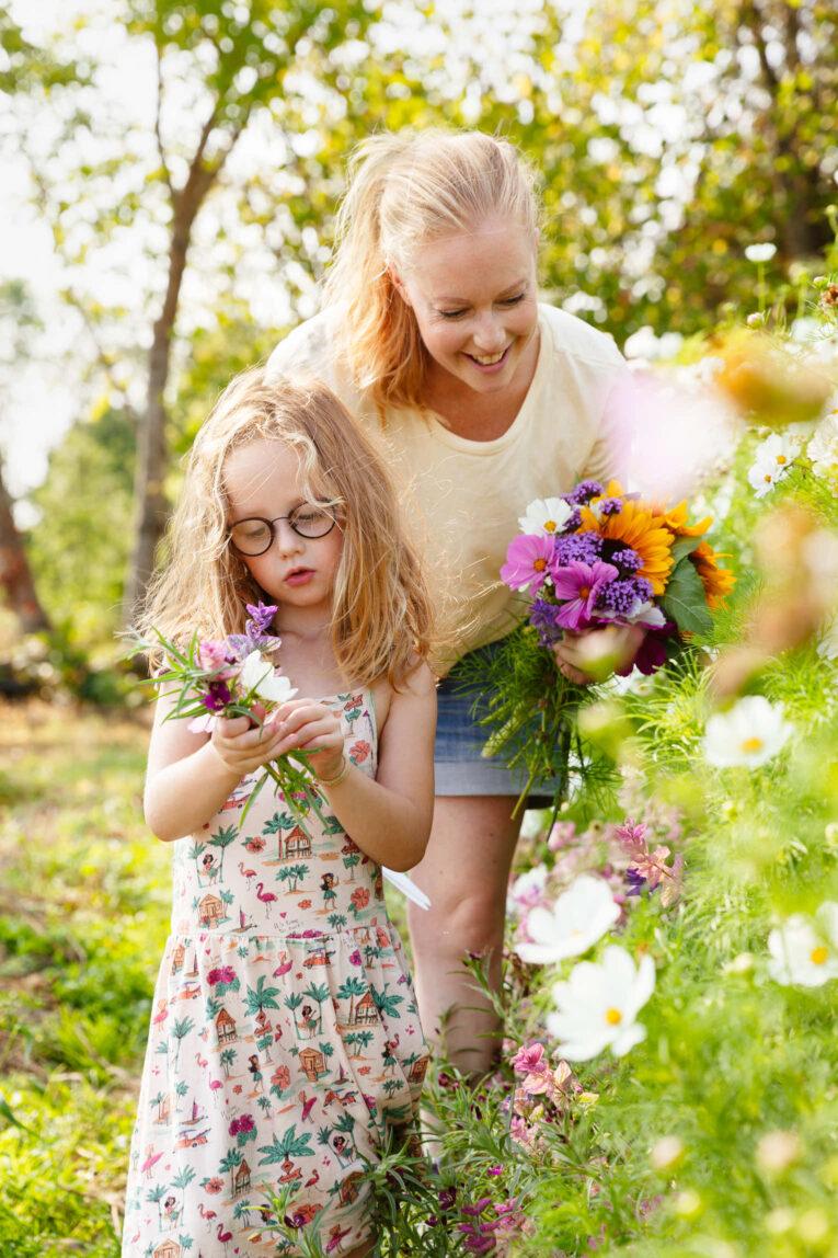 Plocka blommor