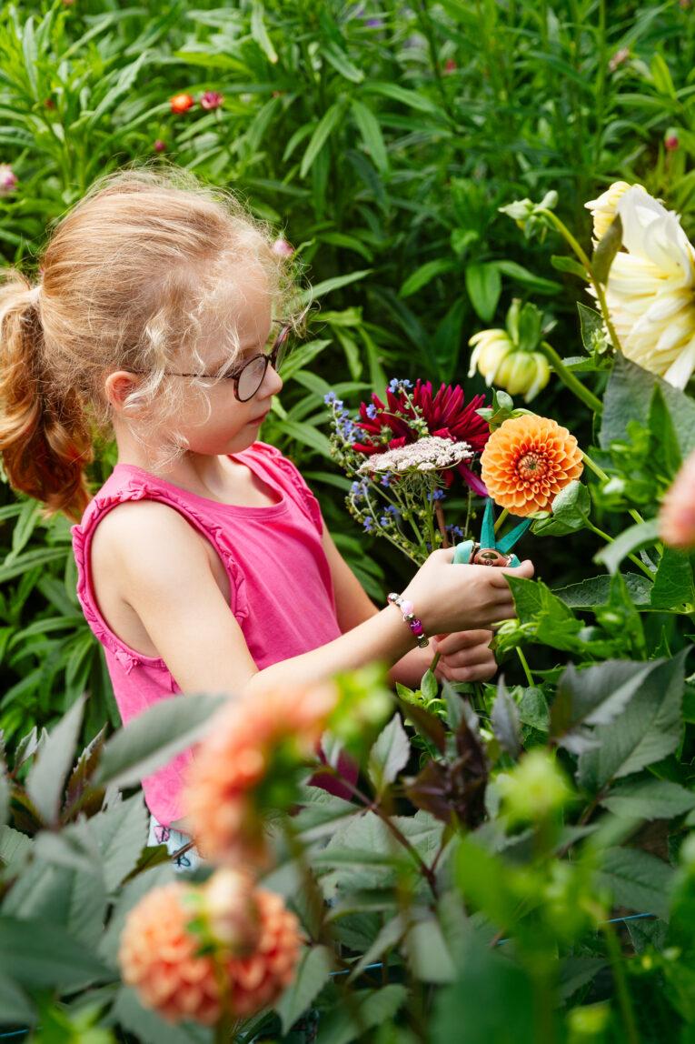 Fiddekulla plocka blommor