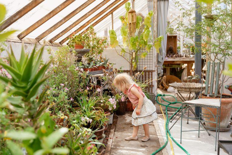 Växthus Borgholms Handelsträdgård