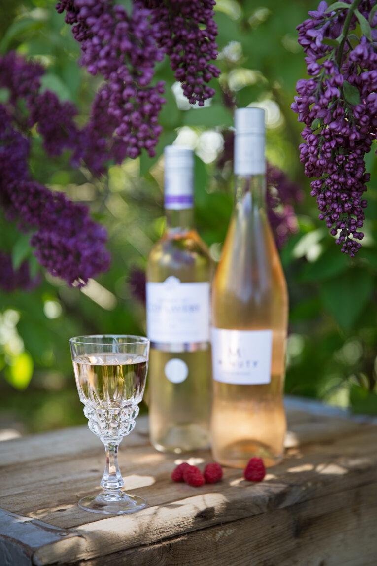 Viner från Provence